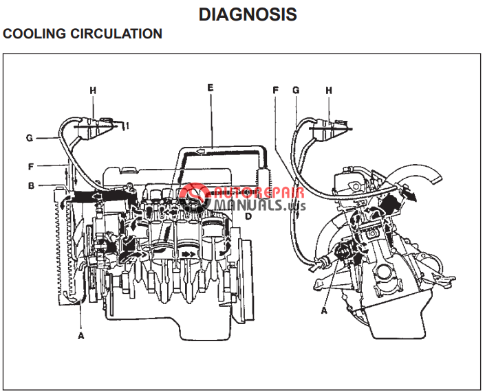 Free Download  Ssangyong Musso Service Manual